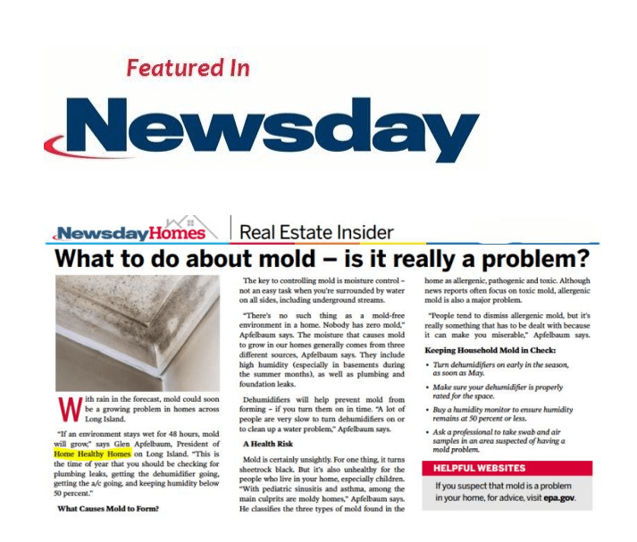 Check Out Our Article In Newsday What To Do About Mold
